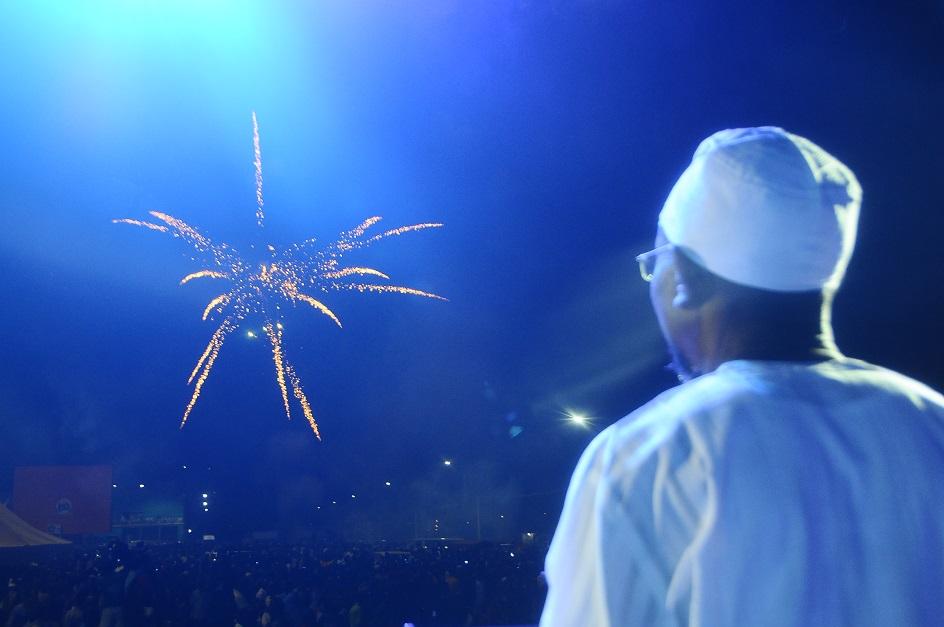 Fireworks 2014 - 2b