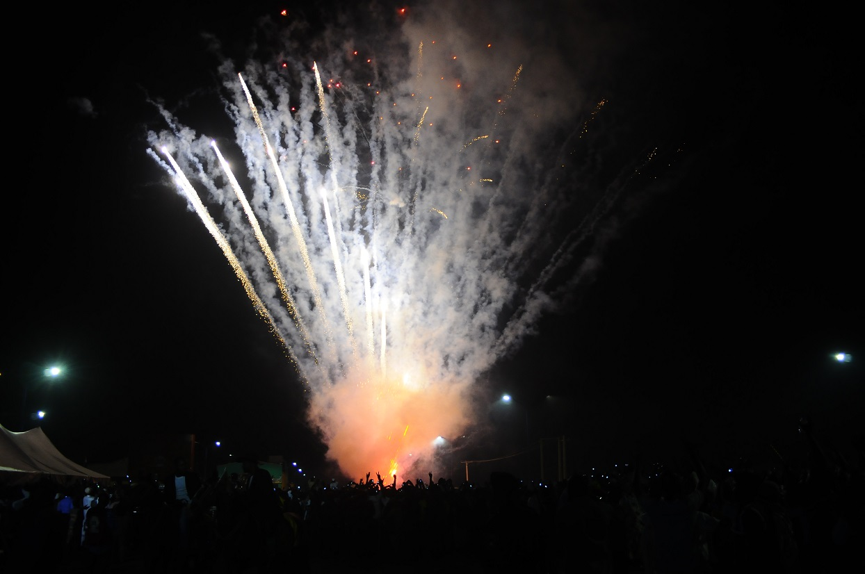 Fireworks 2014 - 3c