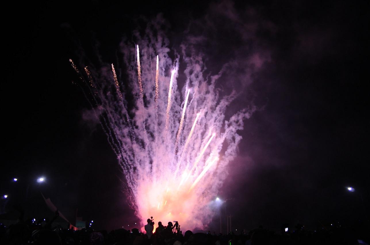 Fireworks 2014 - 3d
