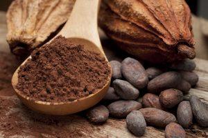 still life of cocoa